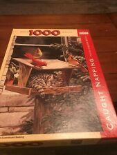 1000 piece Spillsbury Puzzle Company Jigsaw Puzzle