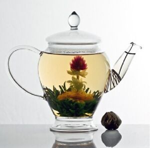 Blooming Tea🍵Flowering Tea🍵12 Variety's To Choose From🍵YOUR CHOICE!!🍵GIFT