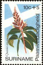 SURINAME -1974- Easter Charities Flower - BITTERWOOD - MNH Semi-Postal--Sc.#B203