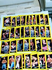 Huge 262 WCW 1991 Impel Wrestling Cars Lot Sting Ric Flair Luger Sid And More