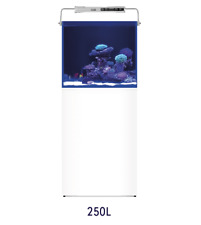 L`Aquarium 250l Aquarium Systems Aquariumkombination 60x52x55cm Meerwasser