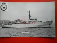 PHOTO  HMS ROEBUCK (H130)  A SURVEY SHIP OF THE ROYAL NAVY