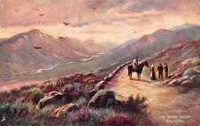 Ireland Killarney, The Black Valley, Horse, Landscape, Paysage