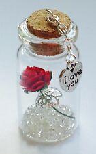 I Love You Miniature Gift Keepsake Girlfriend Wife Gift Present Any Occasion