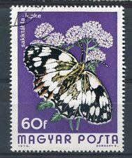 HONGRIE 1974, timbre 2395, PAPILLONS, MELANARGIA GALATHEA, oblitéré