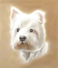 West Highland Terrier Glicee print