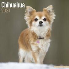 Calendrier 2021 - CHIHUAHUA