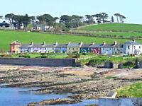 Irish Sand Sample From Red Rock Dublin Bay Ireland 1 bag 30g