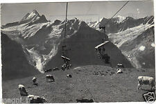 Suisse - Bergbahn Grindelwald-First - Schreckhorn-Fiescherwand