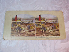 STEREOVIEW CARD Chinese Boats Junks in the Harbor Hong Kong & Lighthouse Station