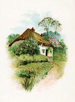 """Waterslide Decals (4pcs 2.5""""x3.5""""each) Quaint Cottage FLONZ 0715 Vintage Flowers"""