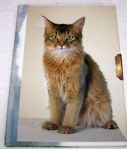 Süsse Katze Tagebuch mit Schloß Katzen Cat Notiz Buch  Neu OVP