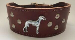 GREYHOUND/WHIPPET/LURCHER REAL LEATHER COLLAR - SILVER/BRASS