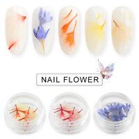 MTSSII 10pcs/Set Real Nail Dried Flowers Nail Art Decor Design DIY Tips Manicure