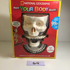 NATIONAL GEOGRAPHIC HOW YOUR BODY WORKS MAGAZINE PART1 BILLY BONES SKULL & TEETH