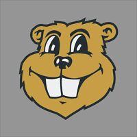 Minnesota Golden Gophers #6 NCAA College Vinyl Sticker Decal Car Window Wall