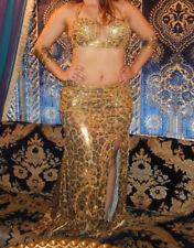 Stunning Golden Egyptian Belly Dance Costume
