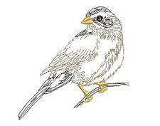 BIRD SKETCHES - 20 MACHINE EMBROIDERY DESIGNS