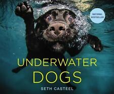NEW UNDERWATER DOGS  BY  SETH CASTEEL HARDCOVER BOOK (English)