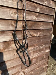 Grackle Bridle Cob Size Black