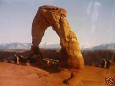 "Vivarium Aquarium Background Desert Rock Arch 24"" Tall x 3ft Wide"