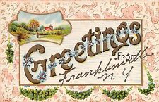 Franklinville New York Greetings From Postcard c1912 Flowers + Scene
