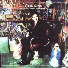 What I Did After My Band Broke Up: The Best of Steve Wynn / Visitation Rights