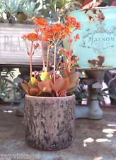 New Pottery Catus Flower Plant Pot Planter Garden Patio Decor Tree Trunk