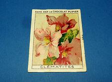 LES FLEURS CLEMATITES 2 CHROMO CHOCOLAT PUPIER JOLIES IMAGES 1930