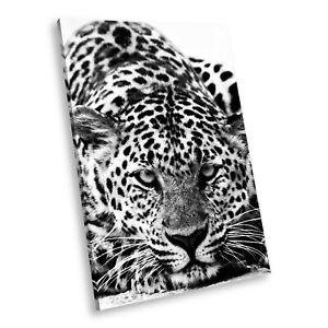 A089 Black White Animal Portrait Canvas Picture Print Large Wall Art Leopard