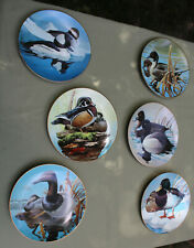 New ListingSet of 6 Collector Plates by Rod Lawrence Waterfowl of America Nature'S Heritage