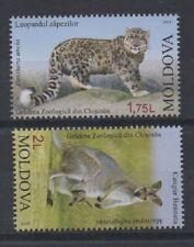 PAIR OF LEOPARD KANGAROO ANIMAL KINGDOM MOLDOVA 2013 MNH STAMPS