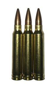 300 Winchester Magnum Snap Caps Rounds Practice Dummy .300 Win Mag