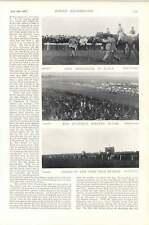 1896 carrera de caballos Doncaster Canterbury peregrino Jolly barco Gold Cup