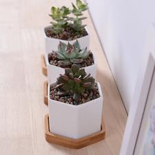 "2.8"" Modern White Ceramic Succulent Planter Pots Mini Plant Flowerpot w/ Holder"
