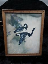 Vintage Vernon Ward Picture of Barnacle Geese 1960s (313)
