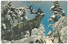 Postcard St John's Newfoundland Caribou Statue WWI Memorial Bowring Park ca1960s