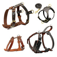 Genuine Leather Dog Harness Heavy Duty Adjustable for Small Large Dogs Labrador