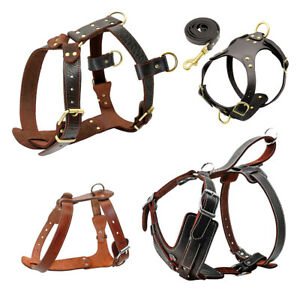 Heavy Duty Genuine Real Leather Dog Harness for Large Dogs Pit Bull Boxer L XL