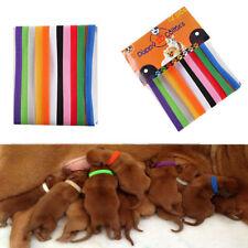 Pet Dog Cat Puppy ID Collar 12Pcs Nylon Collars Adjustable New Arrival