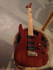 Washburn USA guitar