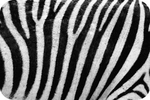 Zebra Stripes Glass Worktop Saver Kitchen Board - Extra Large - 60 x 40cm