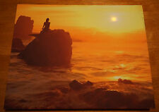 Lighted Mermaid Coral Rock Ocean Waves Sunset Beach Nautical Home Decor Sign NEW