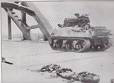 Dead Germans at the Rhine in Holland WWII Dispatch Photo News Service