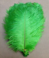 10pcs Wedding Birthday Party Natural Ostrich Feathers 10-12inch/25-30cm Bulk US