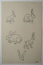 Beau DESSIN Ancien Étude Lapin Lièvre Animal ART DÉCO 1941 #B