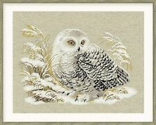 Counted Cross Stitch Kit RIOLIS - WHITE OWL