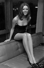 The Avengers Diana Rigg New 10x8 Photo Sit