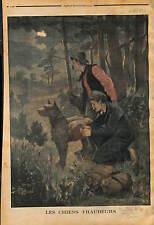 Contraband  Smuggler Smuggling with DOG Customs BELGIUM  1902