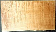 CURLY QUILTED Maple #4124 Exhibition grade 5A Bass GUITAR Body BLANK Wood